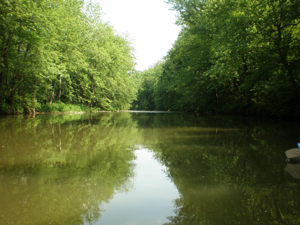 Frankstown Branch of the Juniata River