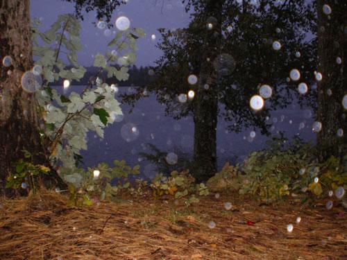 Relentless rain on Saint Regis Pond